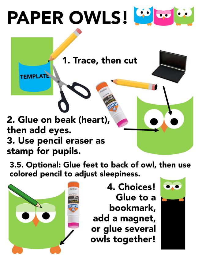 owl infographic