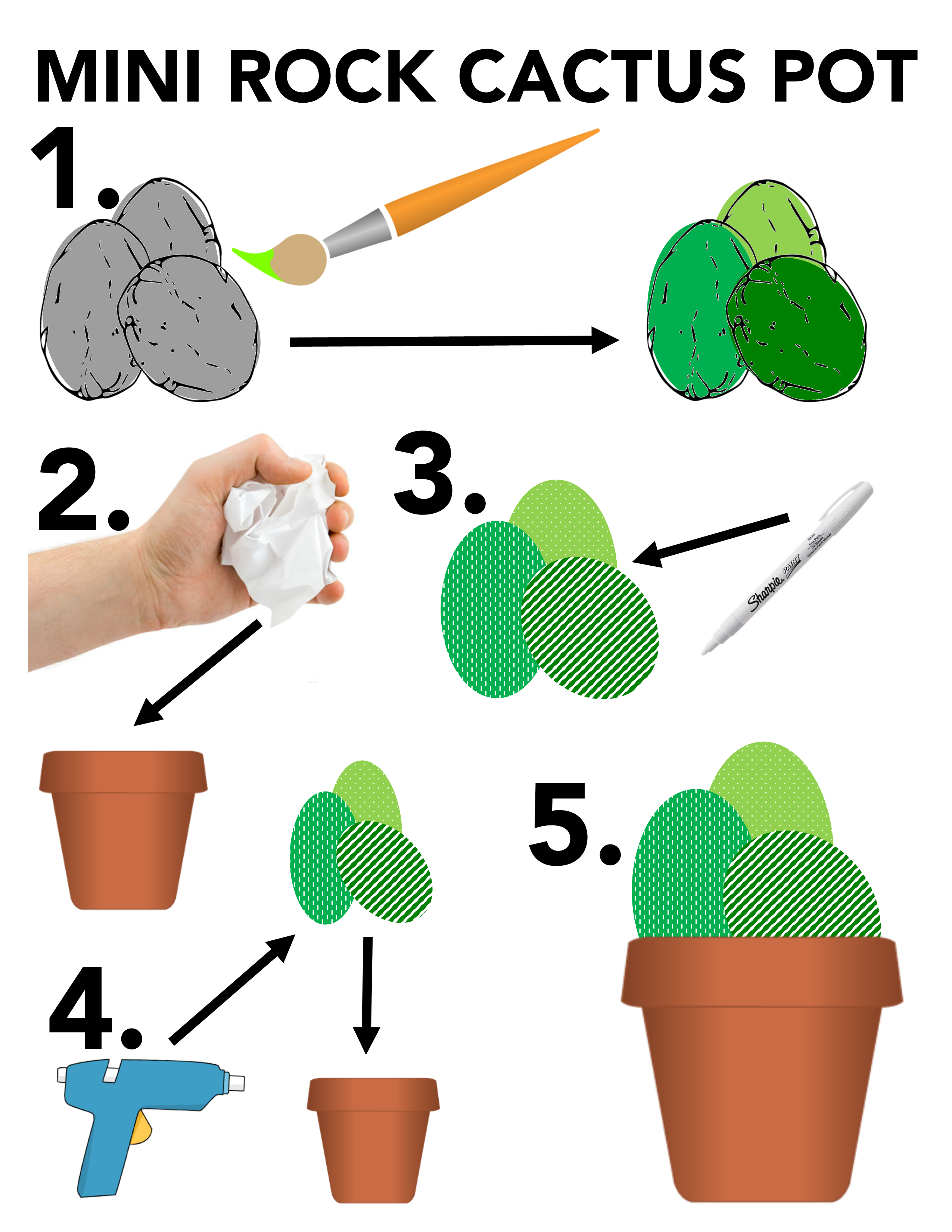 rock cactus pot infographic